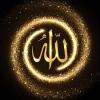 IslamOnTheWay