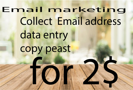 DATA ENTRY EMAIL MARKETING SERVICES