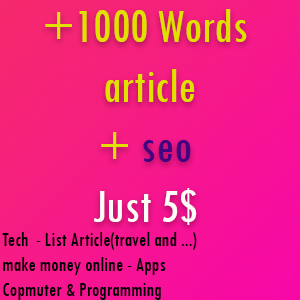 +1000 words unique article + seo