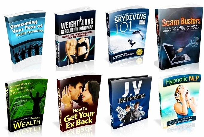 100 Multi-Niche Ebooks With Private Label Rights