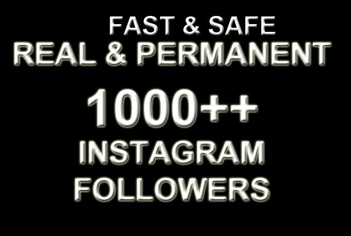 I'll provide 1000 permanent followers