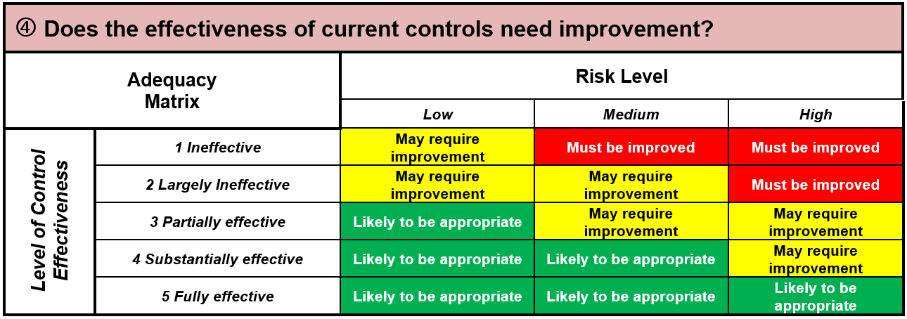 Risk Assessment and Treatment Plan