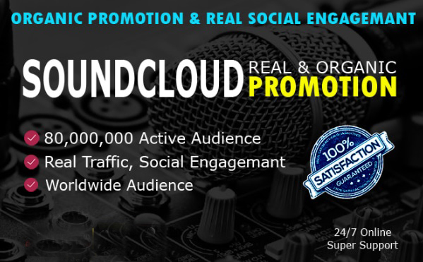 Do Sound cloud Music Promotion Professionally And Manually