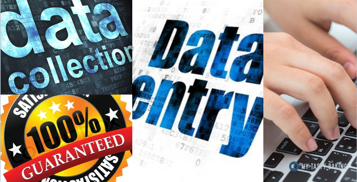 Any Kinds Of Data Entry And Data Collection In 24 Hours