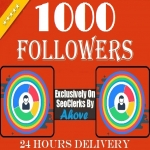 Get instant 1000 Followers To Your Social Profile