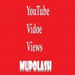 Faster 1000 YouTube Vlews Non-drop Refill Gaurantee