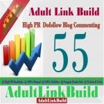 Make 55 SEO Blog Commenting Unique Backlinks Pr2 to Pr7 For AduIt