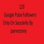 provided 120+ Google Plus Followers for boost to your business