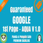Guaranteed Google 1st Page - Only 2 Left