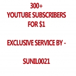 Real 300 Youtube Subs cribers