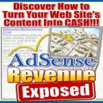 Adsense Revenue Exposed