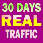 Get Daily Real Website Traffic from Social Media and Search Engines