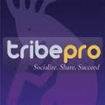 promote 2 URLSon tribepro in 300 social syndication and shares