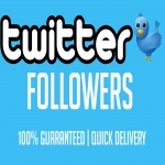 Instantly get you 500+ Twitter Audit passed Followers