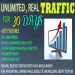 I will drive real Unlimited Website TRAFFIC to your website for 30 days