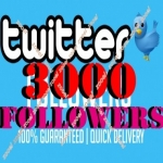 I will get you 3000+ Tw followers Instantly