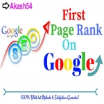 Top Google 1st Page Ranking Organic Premium SEO Use 5 Keywords On Your Website