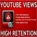 Provide 1000 YouTube Views to your video