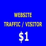 6000+ Human Website traffic/Visitors
