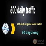 600 organic & social WEB TRAFFIC for your site