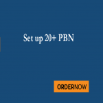 Will setup your pbn websites on public blogs sites