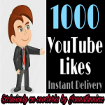 1000+ H Q likes or 300 Subscriber completed times 2-24 hours