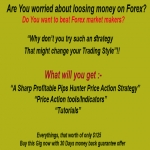 Give You Best Pips Hunter Forex Trading Tools And Rules
