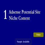 Super Micro NIche Adsense Sites Guaranteed Earnings Exclusive Seoclerks