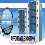 1 Year TOTALLY UNLIMITED cPanel Hosting
