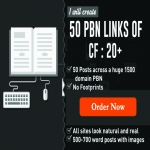 50 Strong High Quality PBN Backlinks