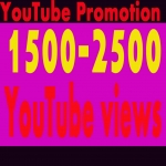 Guaranteed 1500-2500 YouTube Views