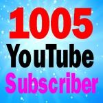 Guaranteed 1005 subscriber fully safe and non drop 24-48 hours order complete