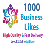 1000 Real and Permanent Social Business Page Likes