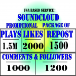 1.5M Soundcloud Plays 2000 Likes 1500 Reposts 1000 Comments And 1200 Followers Permanent.