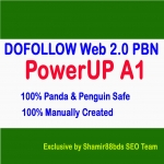 PowerUP A1 - PBN - Build 30 DOFOLLOW Web 2.0 Private Blog Network To Increase Ranking