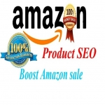 Effective 100 USA Traffic to Wish your Amazon Products