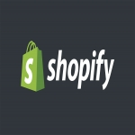 Create Professional Shopify Store