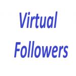 Get 1000 Virtual Followers Fast