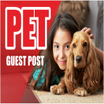 do guest post on PET or ANIMAL related blogs