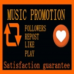 Can purchase High Quality Music Promotion 400Like Or 400 Repost 400 Followers