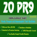 20 Pr9 SEO High Authority Backlinks,  Skyrocket Your Ranking