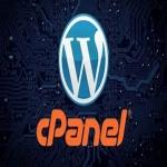 1 Year cPanel 50GB - FREE SSL - FREE WEBSITE BUILDER