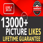 Add Fast 13000+ High Quality Likes OR Views