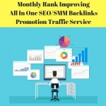 Done For You Rank Improving All In One SEO/SMM Backlinks Promotion Traffic Service