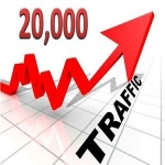 20,000 Real Visitors for your website